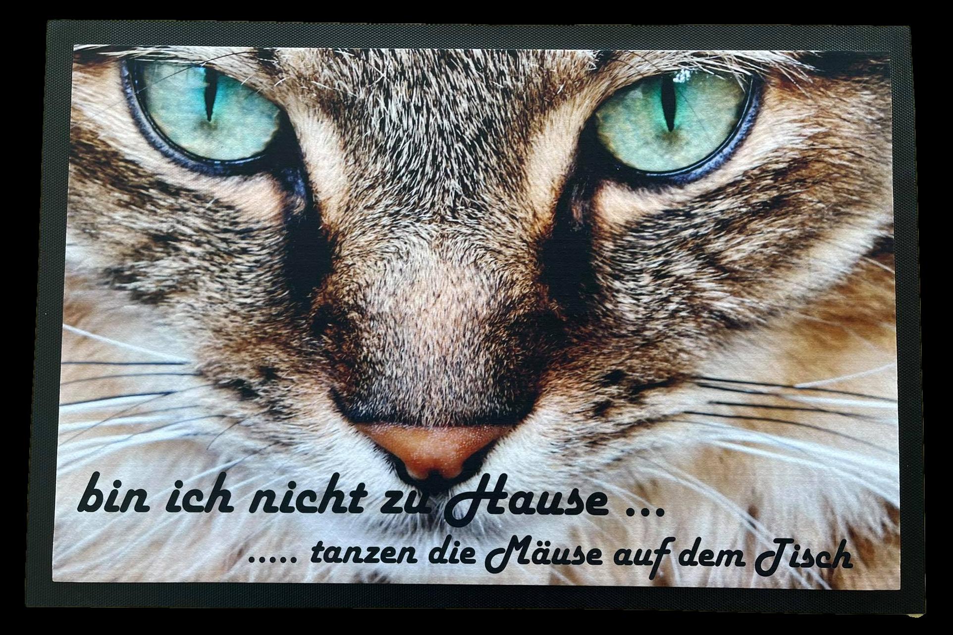 große Fußmatte 75x50 cm rutschfest mit Katze und Spruch F001