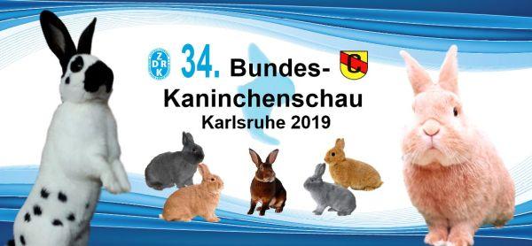 2 Stk. Fan Tasse Bundeskaninchenschau 2019 Kaninchen